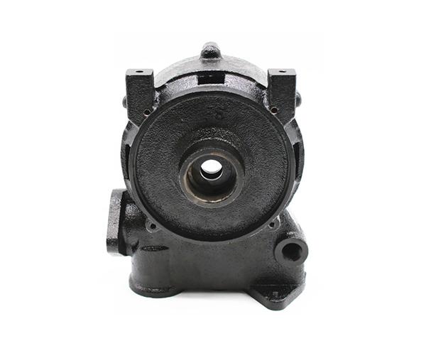 Professional Iron Cast Pump Body
